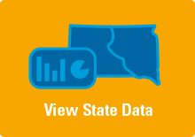 View State Data